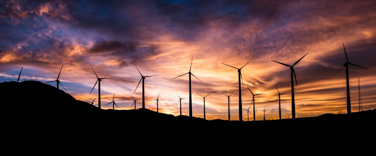 Parc d'éoliennes, au coucher du soleil