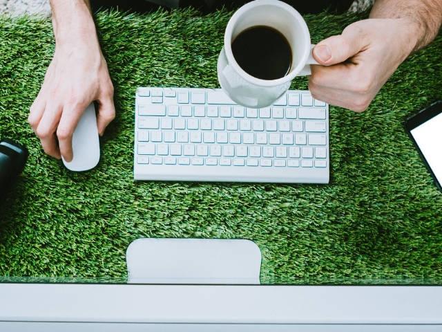 un clavier et une souris d'ordinateur posé dans l'herbe