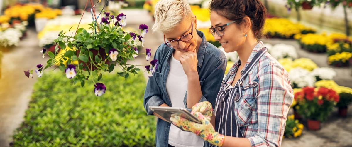 5 trucs faciles à faire pour végétaliser la ville