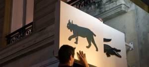 Lacoste renouvelle son opération Save Our Species pour la protection de la faune