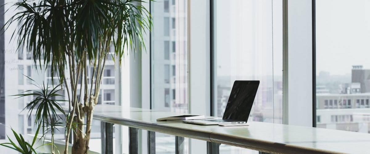 Un bureau avec une plante et un ordinateur posé sur une table.