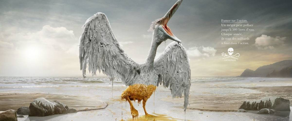 Un oiseau blanc est bloqué par une marée noir