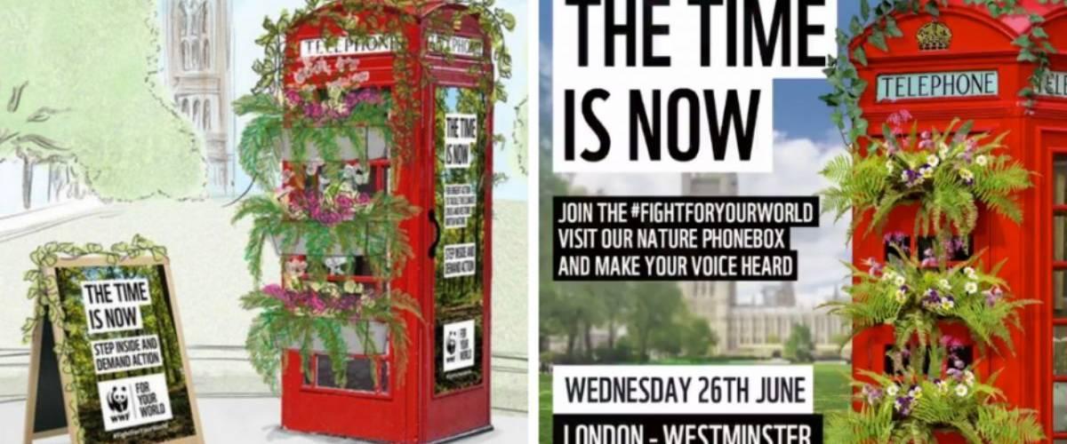 Une cabine téléphonique britannique rouge végétalisée