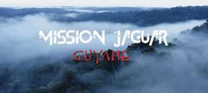 Mission Jaguar Guyane : la nouvelle web-série par WWF France