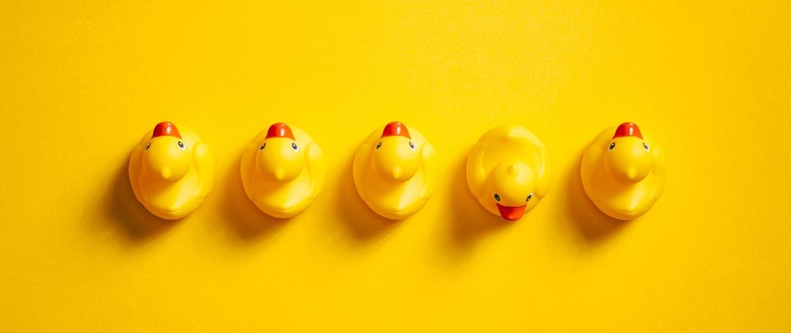 Une rangée de canards en plastique jaunes