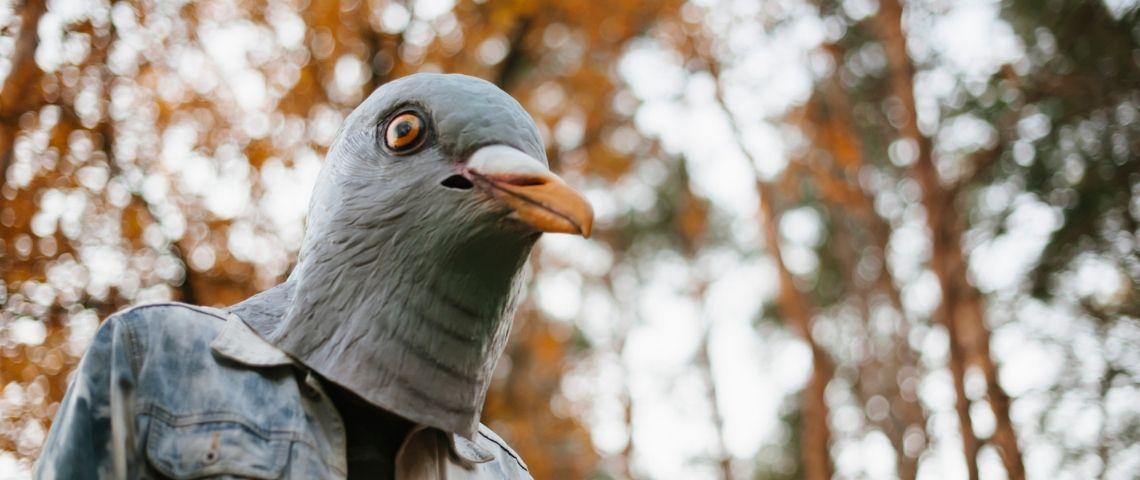 Un humain avec un masque de pigeon en veste