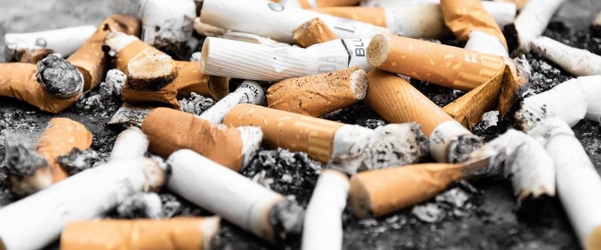 Un tas de mégots de cigarettes