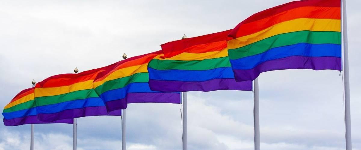 Une lignée de drapeau LGBT
