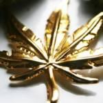 Une feuille de cannabis en or