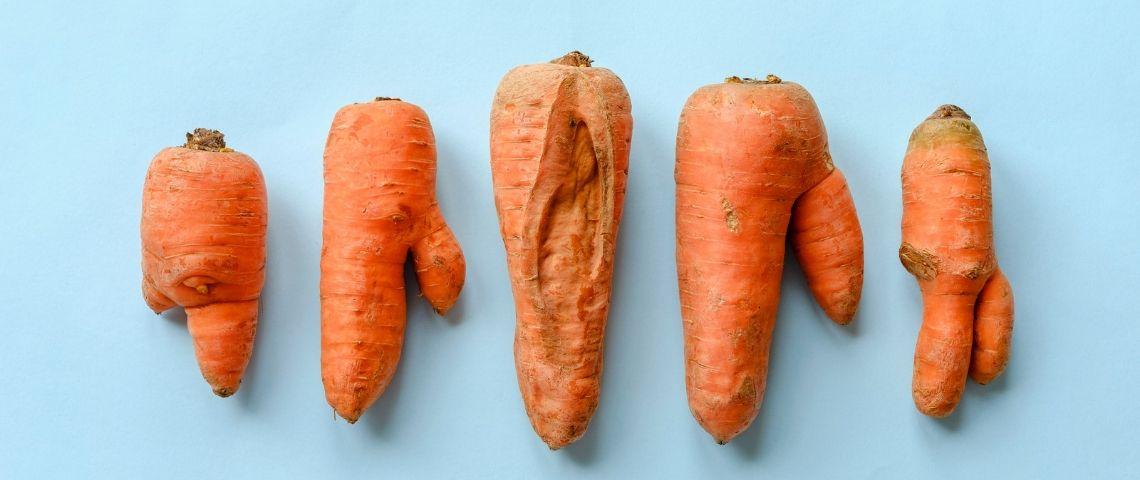 Des carottes abimées