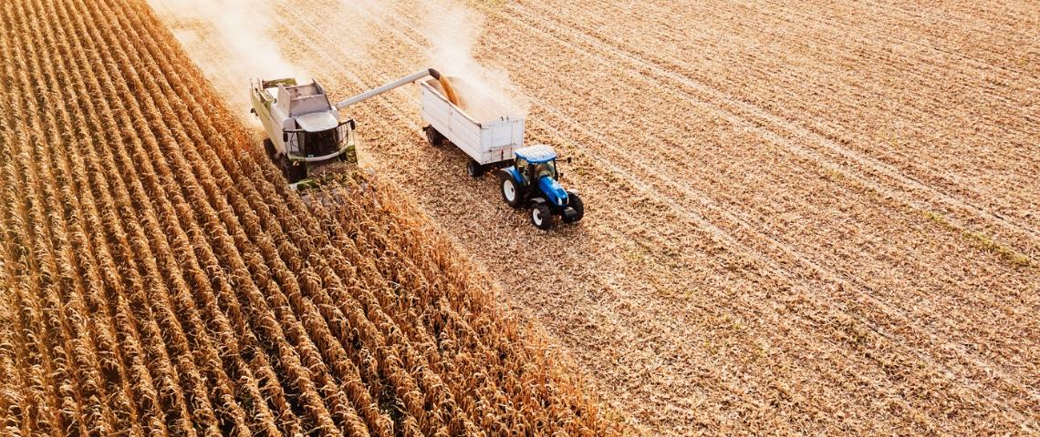 Un tracteur en train de moissonner un champ de blé