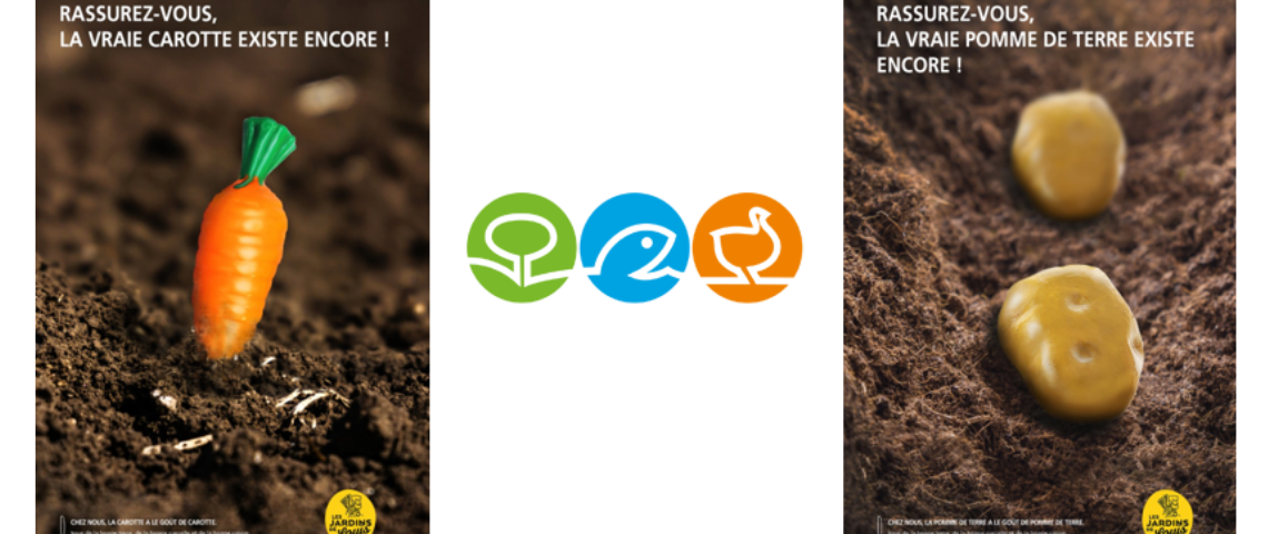 Visuel de faux légumes planté en pleine terre