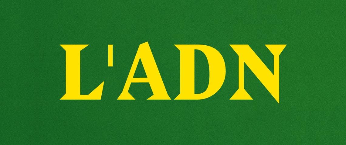 le logo en jaune sur fond vert