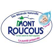 SOCIETE DES EAUX DE MONT ROUCOUS
