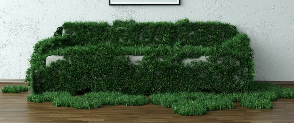 un canapé avec de l'herbe dessus