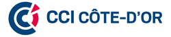 CHAMBRE DE COMMERCE ET D'INDUSTRIE COTE-D'OR DIJON METROPOLE