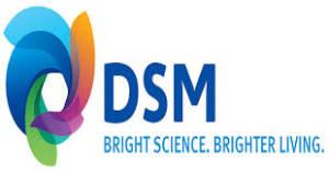 DSM FRANCE
