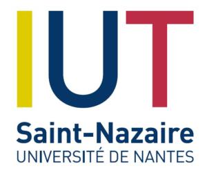 IUT ST NAZAIRE UNIVERSITE DE NANTES