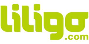 LILIGO METASEARCH TECHNOLOGIES