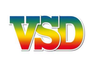 SNC VSD (VSD EDITION ACTUALITE)