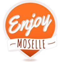 COMITE DEPARTEMENTAL TOURISME DE MOSELLE