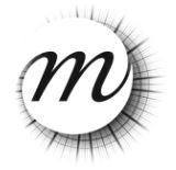 ETABLISSEMENT PUBLIC DE LA REUNION DES MUSEES NATIONAUX ET DU GRAND PALAIS DES CHAMPS-ELYSEES