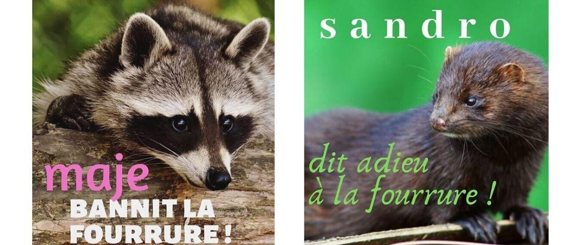 Visuel de la Peta : Maje, bannit la fourrue ! et Sandro dt adieu à la fourrure