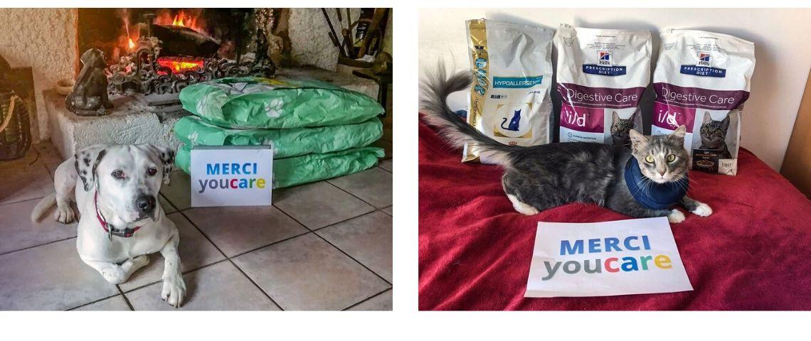 2 photos de chien avec à côté d'eux des sacs de croquettes et une pancarte : merci YouCare