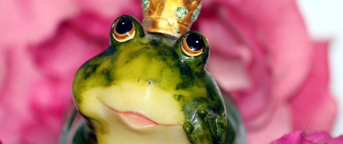 Photo d'une grenouille avec une couronne sur sa tête