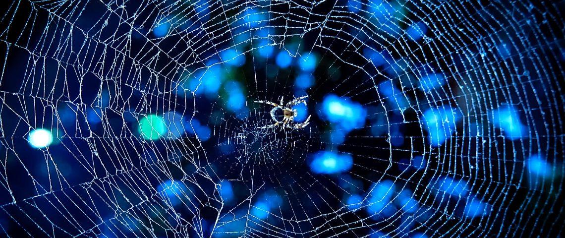 toile d'araignée bleue