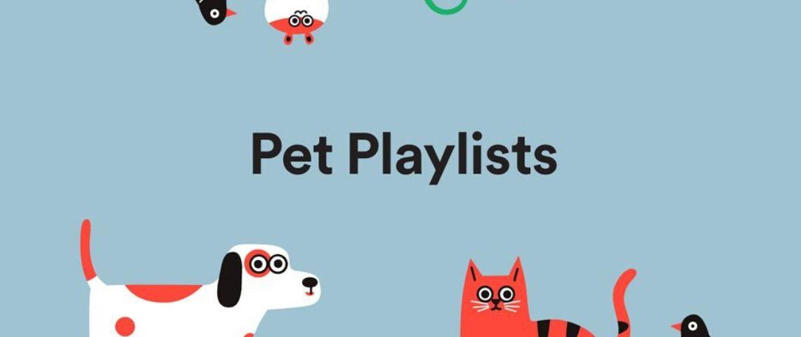 Capture d'écran de l'interface Pet Playslits