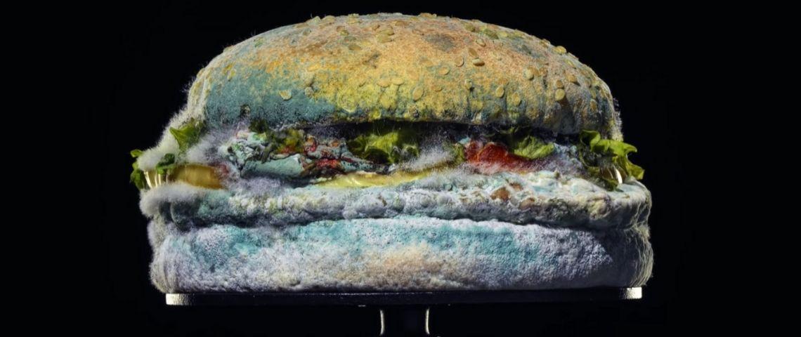 un burger moisi en pleine décomposition