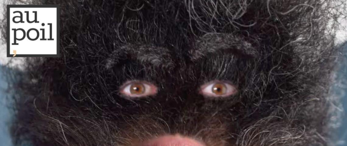 Capture d'écran de la campagne, avec une barbe qui a des yeux