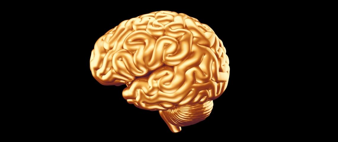 Braintech : le business juteux du cerveau