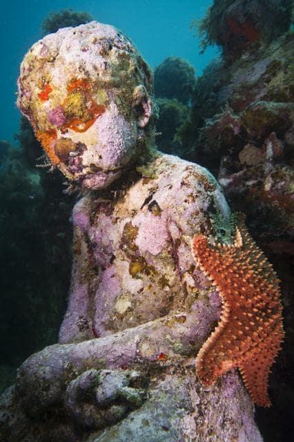 sculpture immergée sous l'eau avec étoile de mer