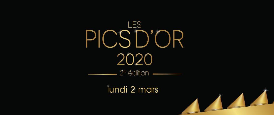 Logo Pics d'or 2020