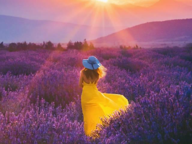 Une femme portant une robe jaune dans un champ de lavande