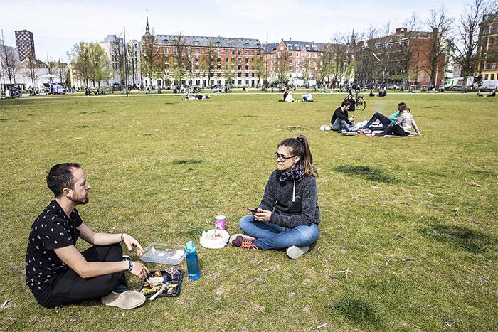 Des Danois dans un parc