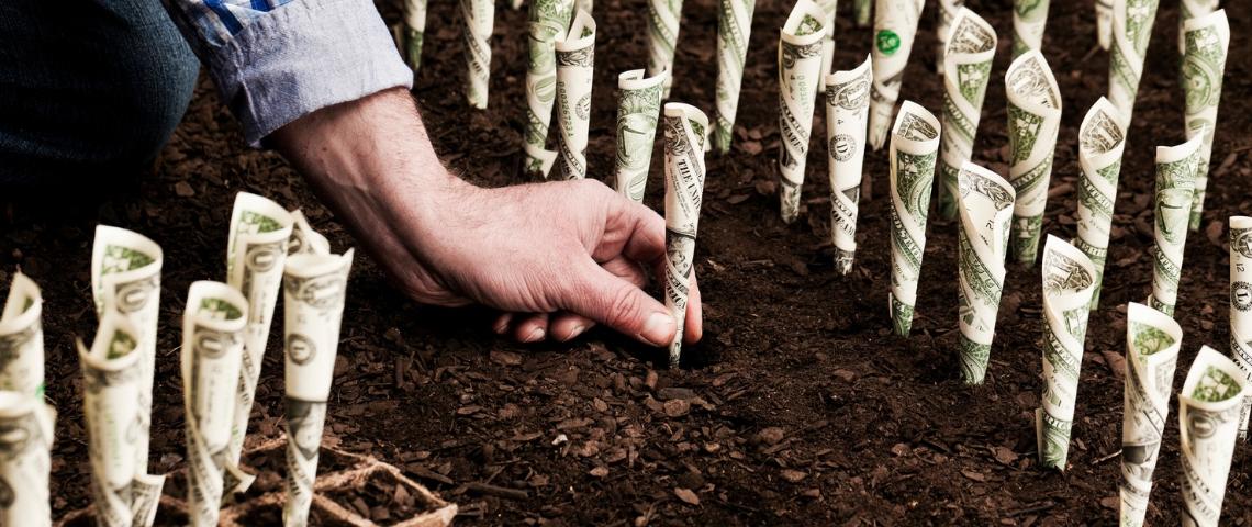 Un homme en train de planter des dollars dans le sol