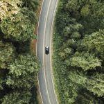 Une voiture sur une route au milieu d'une forêt