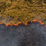Un incendie dans la forêt amazonienne