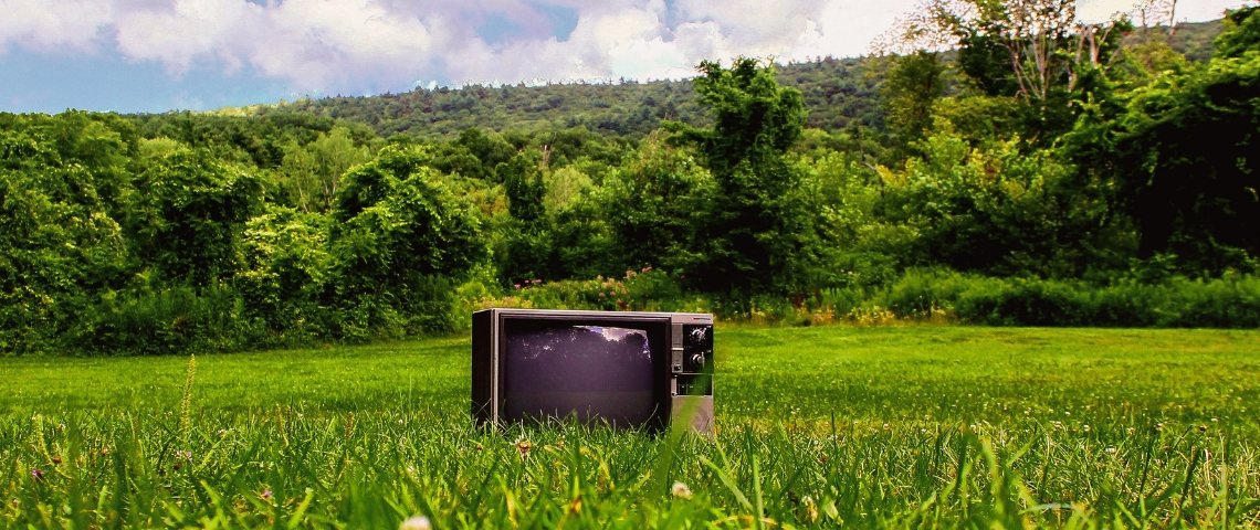 Une télé dans un pré