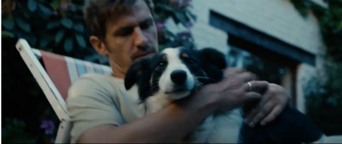 Un chien avec son maître