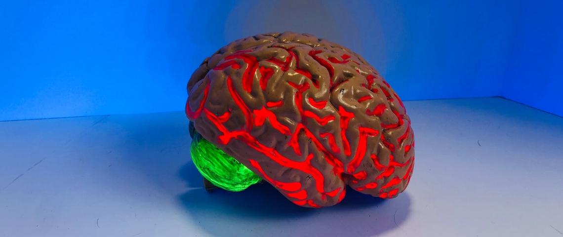 Un cerveau rouge lumineux sur fond bleu