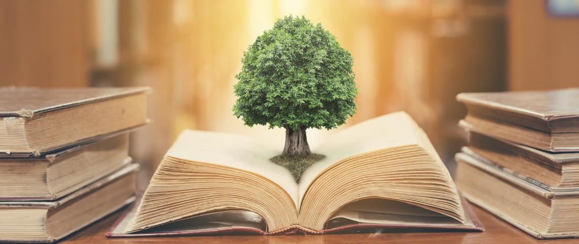 Un arbre sortant d'un livre