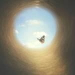 Un papillon au bout du tunnel