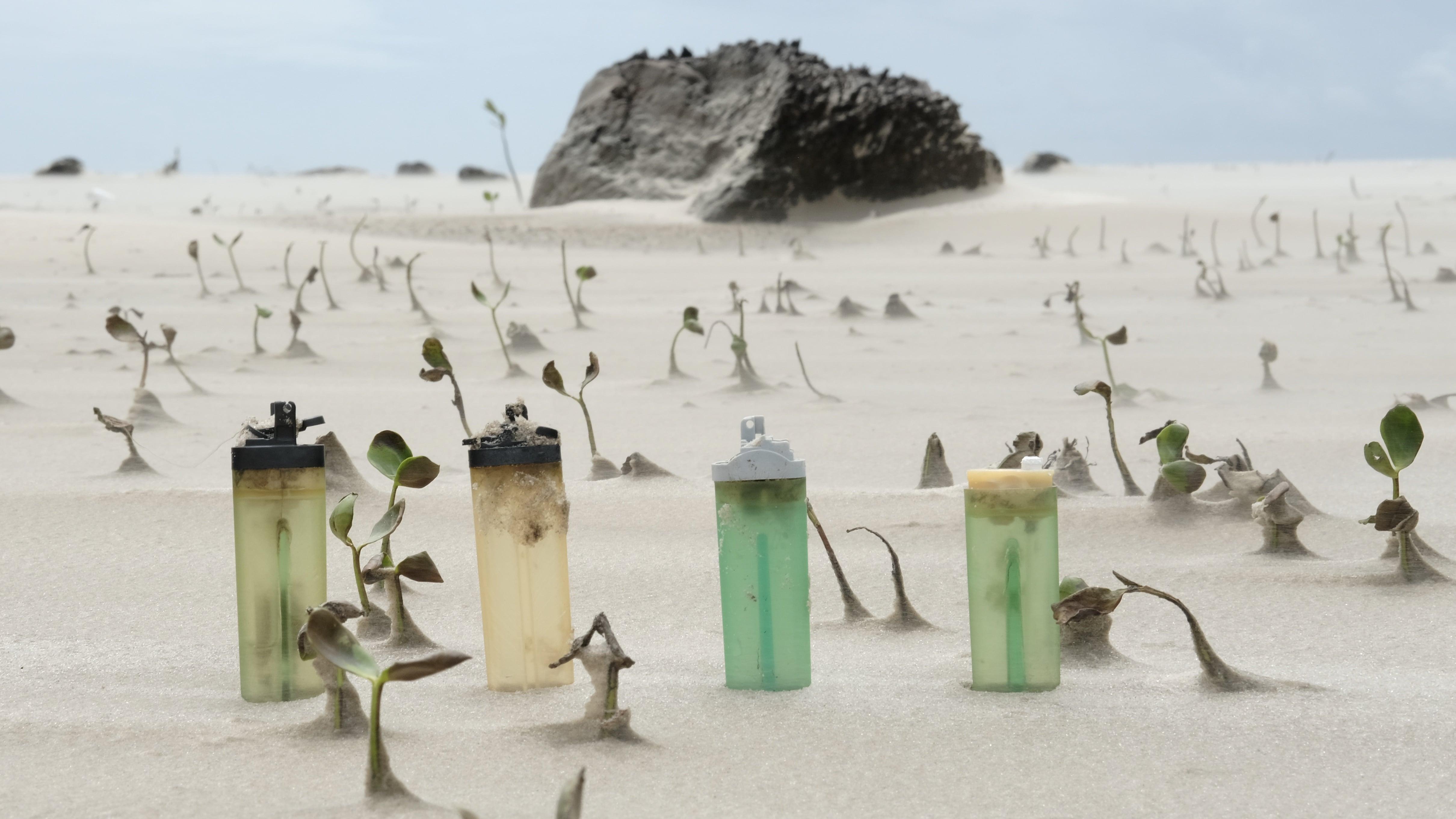 des briquets sur une plage