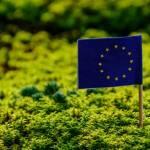 Le drapeau de l'Union Européenne planté dans l'herbe
