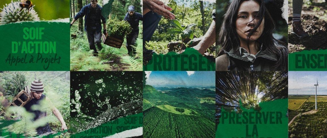 Montage de visuels sur la nature