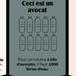 Graphique de l'empreinte carbone du Boeuf et de l'avocat et présentant la menace de disparition sur les cabillauds